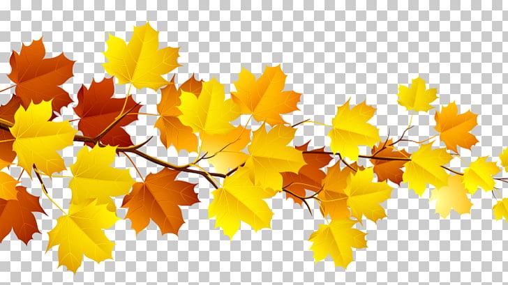 Autumn leaf color , Fall Season PNG clipart.