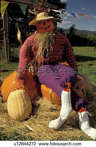 Stock Photo of North Carolina, NC, Halloween, A pumpkin man.
