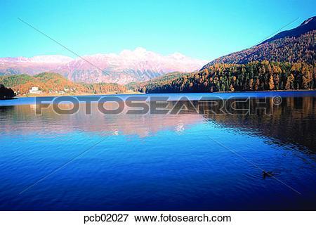 Picture of scene, fall, river, riverside, river, scenery, autumn.