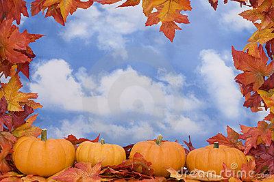 Fall Harvest Scene Royalty Free Stock Photos.
