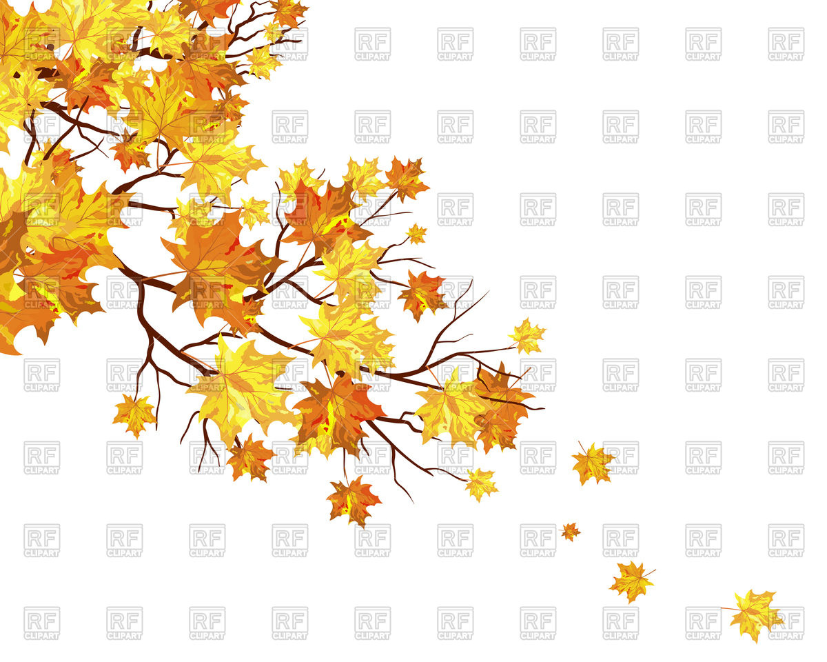 Fall Clipart Tree Branch.