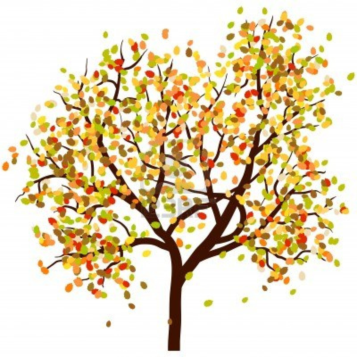 Fall tree with leaves clipart.