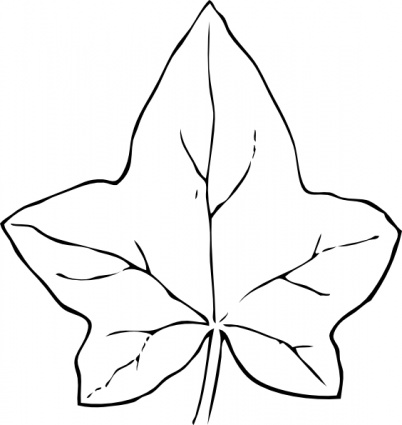 Black Fall Outline Leaf White Free Automatic Leaves Ivy vector.