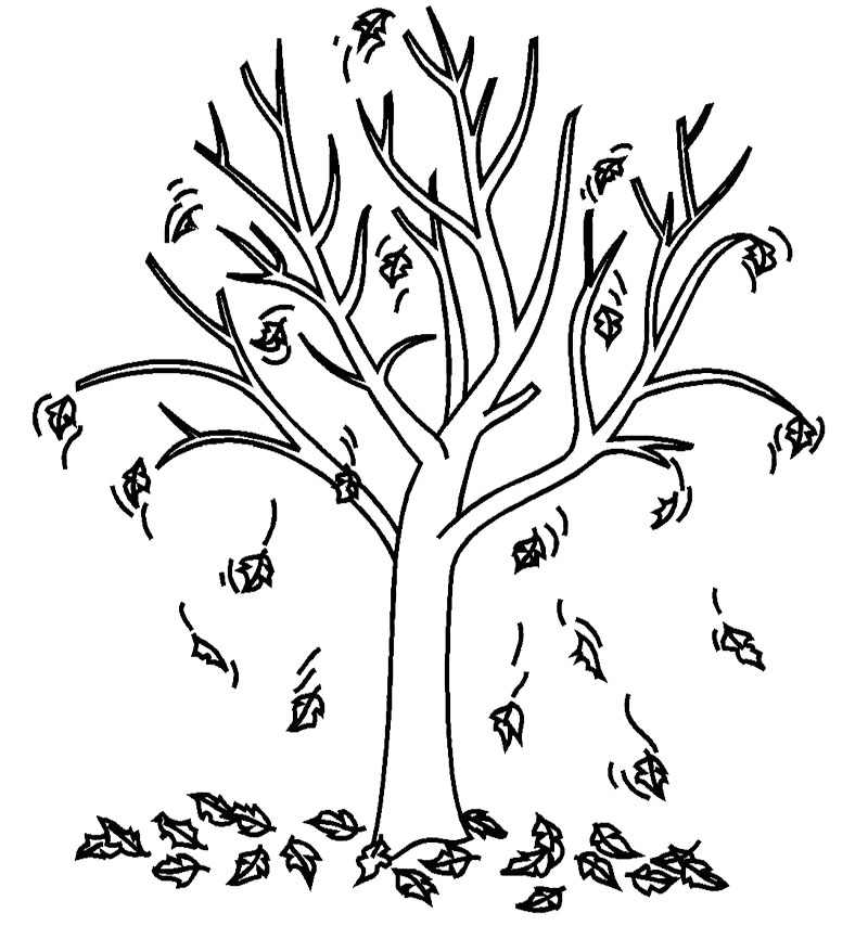Clipart Black And White Fall Tree.