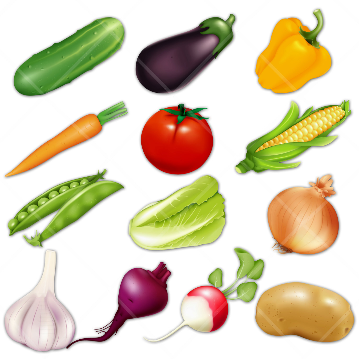 Vegetables Clipart & Vegetables Clip Art Images.