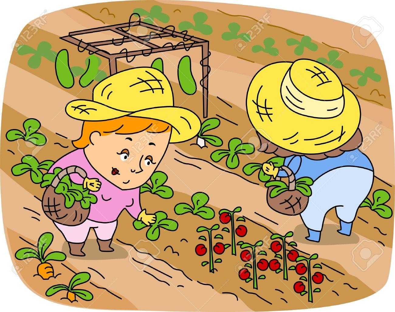 Fall crops clipart.