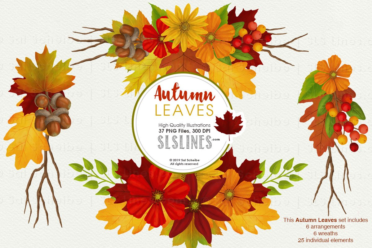Autumn Leaves Fall Foliage Watercolor Clipart.