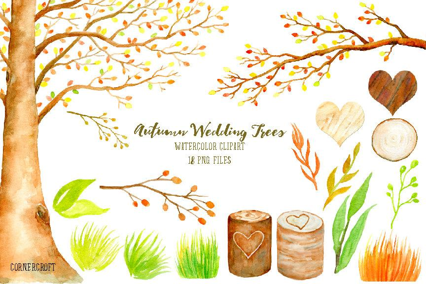 Wedding clipart watercolor autumn beech tree, beech tree in fall color.