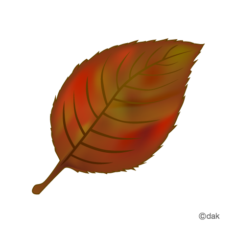 Fallen leaves with autumn leaves|Pictures of clipart and graphic.