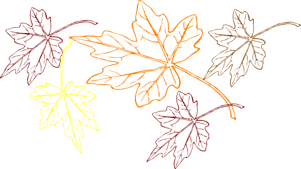 Pictures Of Falling Leaves.