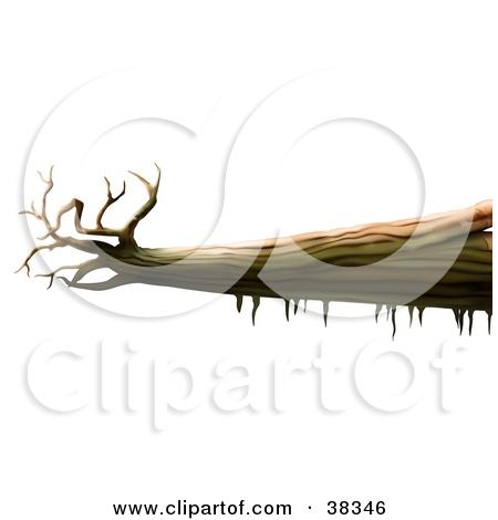 Fallen Tree Clipart.