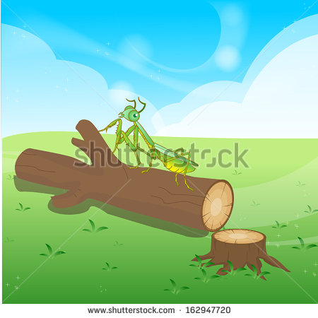 Tree Cutting Stock Photos, Royalty.
