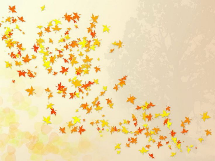 1000+ images about fall images on Pinterest.