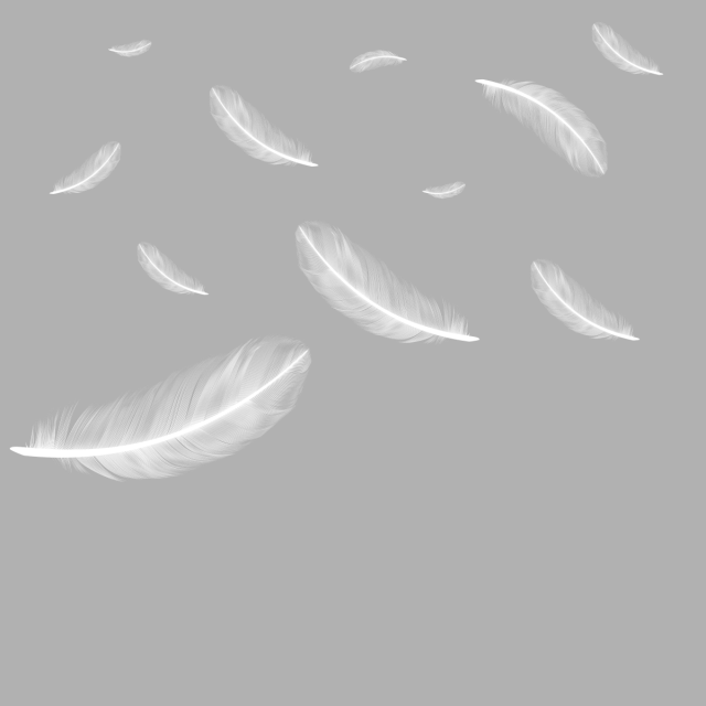 Floating Falling Feather Png Free Download, Feather.