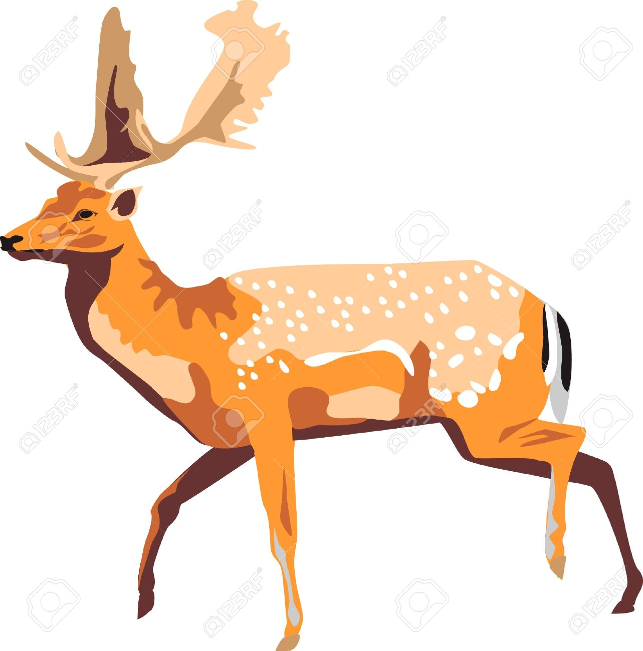 Running Fallow Deer Royalty Free Cliparts, Vectors, And Stock.