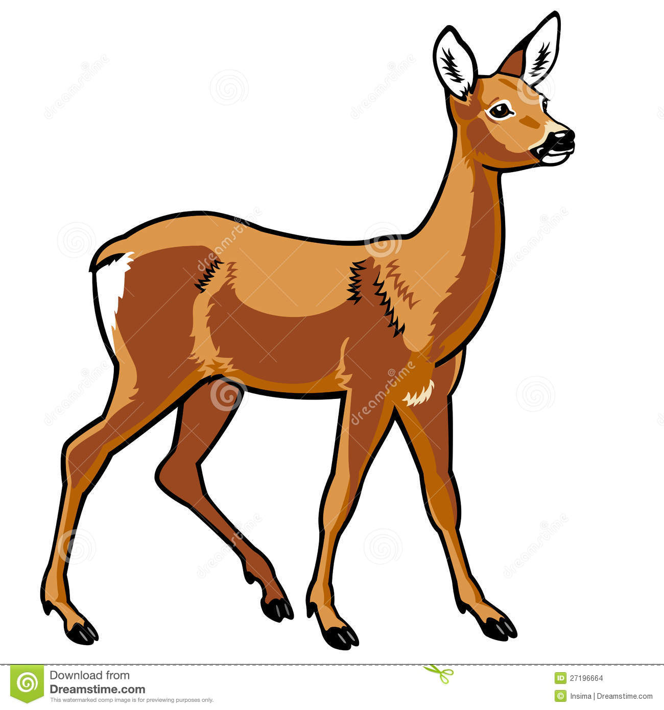 Roe Deer Stock Photos, Images, & Pictures.