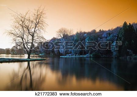 Stock Photo of False color lake landscape with calm relfection.
