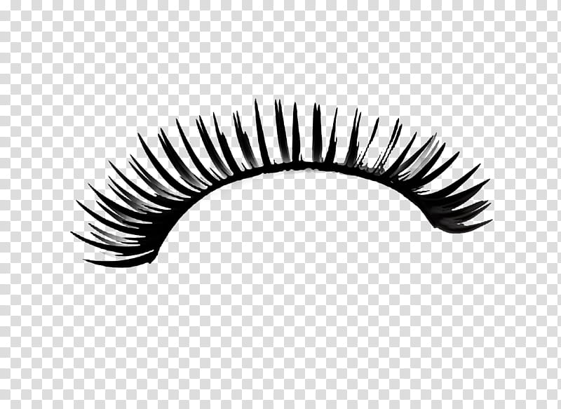 Eyelash, false eyelashes transparent background PNG clipart.