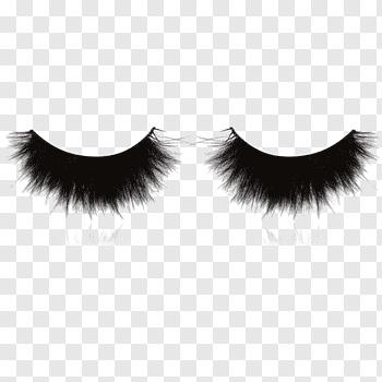 False Eyelashes cutout PNG & clipart images.