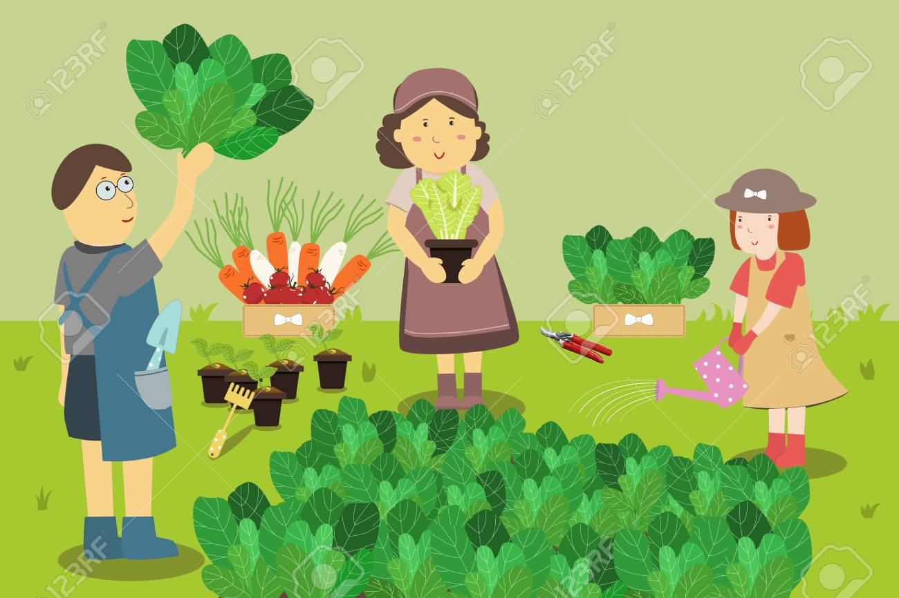 Family farmers. Growing Vegetables in a Home Garden.
