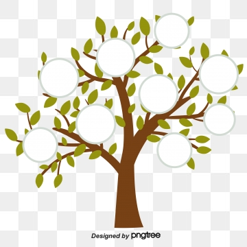 Family Tree PNG Images.