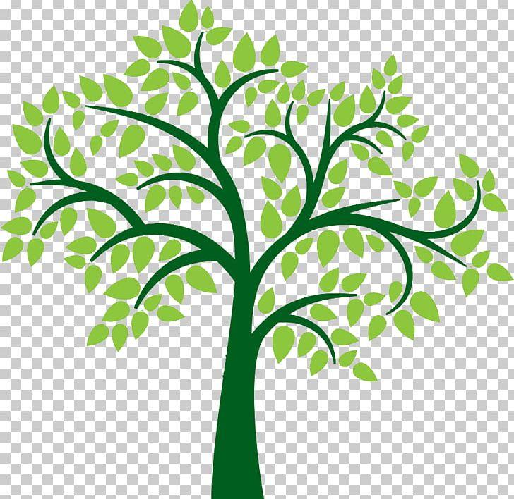 Family Tree PNG, Clipart, Blog, Branch, Clip Art, Crop, Desktop.