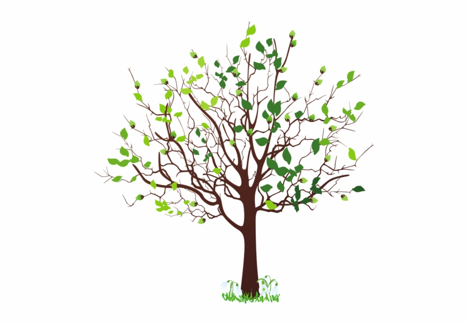 A Family Tree Png.
