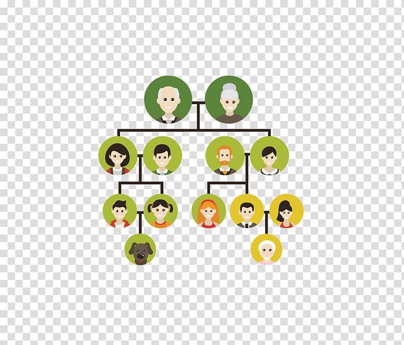 Family tree Genealogy Icon, Family tree transparent.