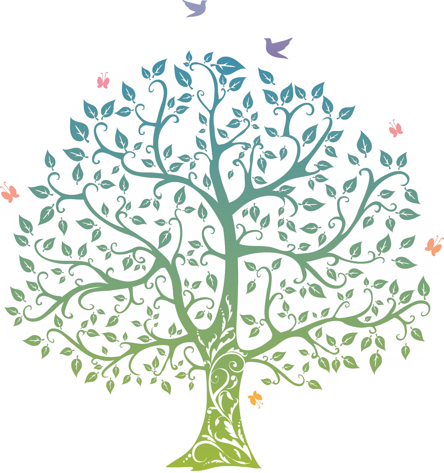 Family Tree PNG Images Transparent Free Download.