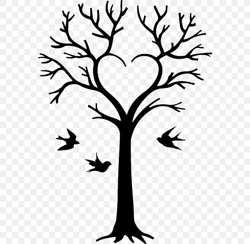 Family Tree Drawing Genealogy Clip Art, PNG, 800x800px.