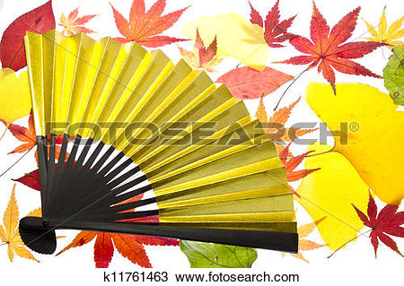 Drawing of maple leaves and the fan k11761463.