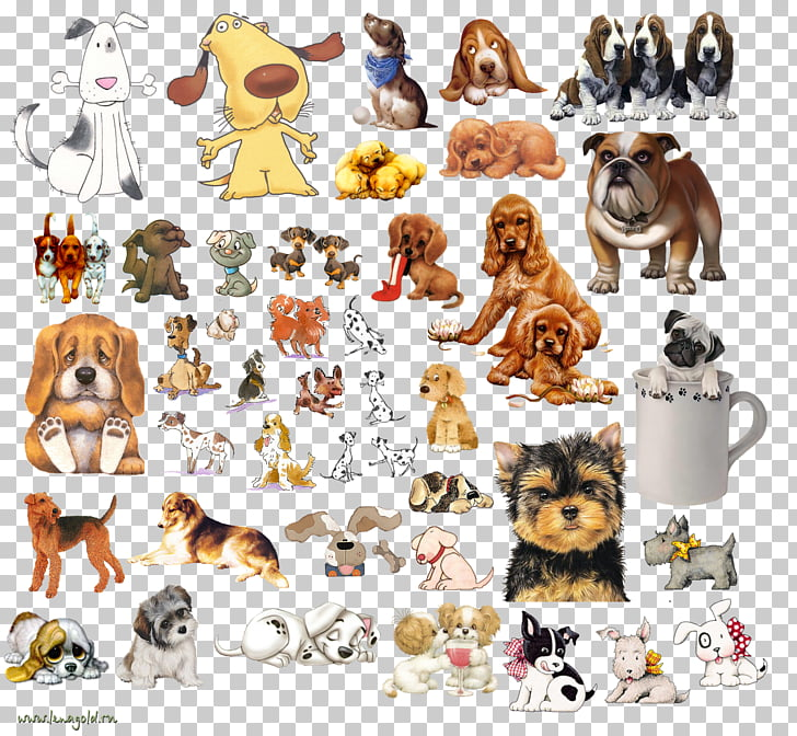 Dog breed Puppy Golden Retriever , fancy dog PNG clipart.