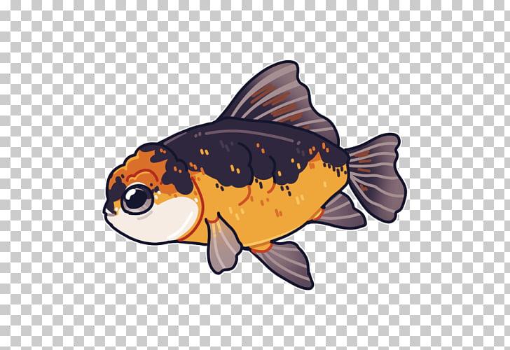 Oranda Ryukin Ranchu Shubunkin Fish, fancy fish PNG clipart.