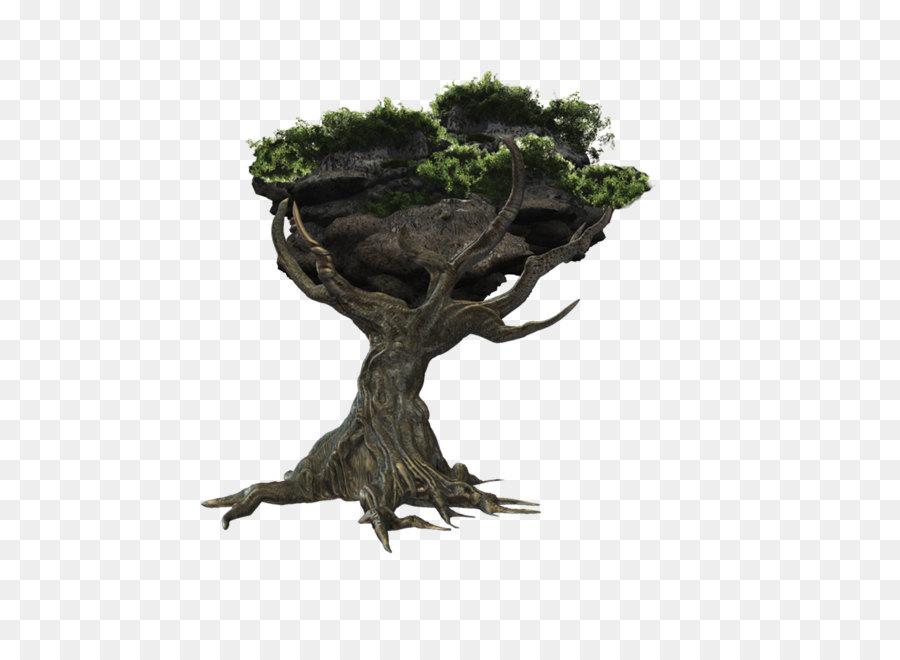 Tree Stump png download.