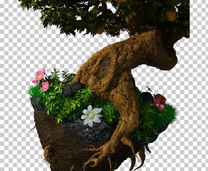 Bonsai Tree Trunk Branch Chinese Sweet Plum PNG, Clipart, Agac.