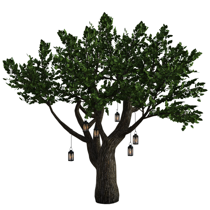 Tree Lanterns Fantasy.