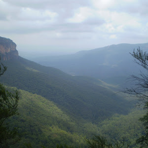 Blue Mountains (Wentworth Falls).