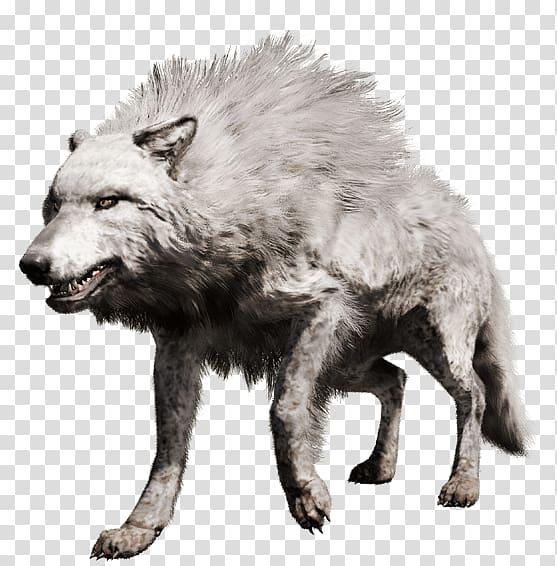 Far Cry Primal PlayStation 4 Gray wolf Far Cry 4, white wolf.