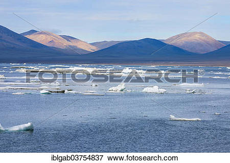 "Picture of ""Ice floes off Wrangel Island, a UNESCO World Heritage."