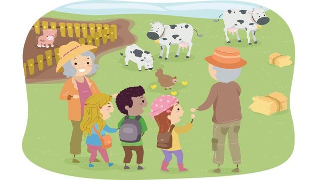 Fall Farm Trips.