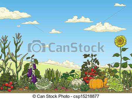 Vectors Illustration of Vegetable garden bed.