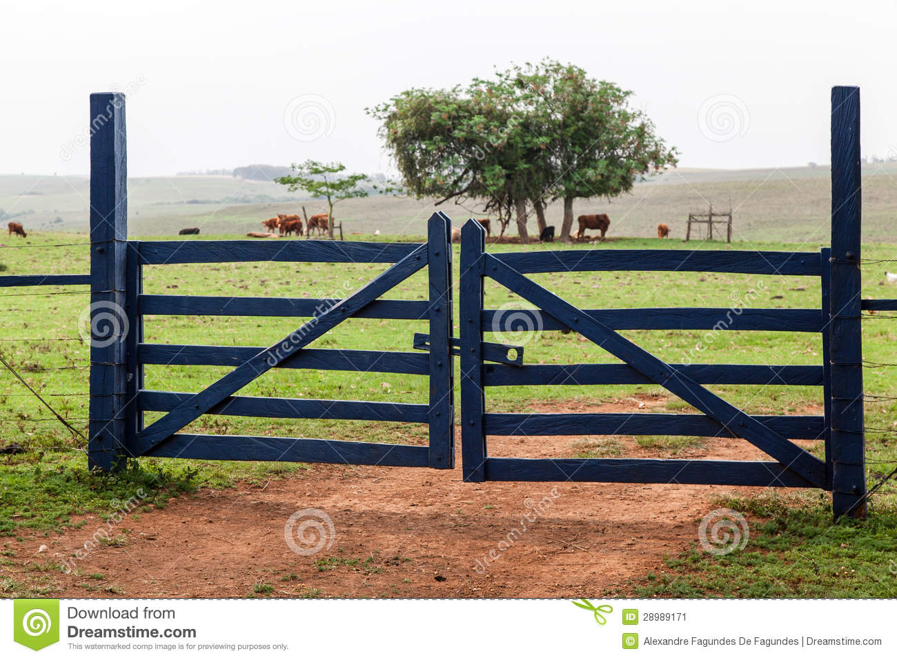 Farm Gate Stock Image.