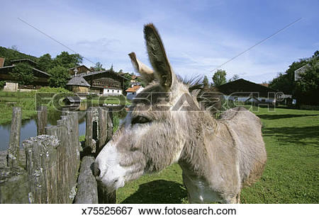 Picture of Germany, Bavarian Forest, Farm museum in Tittlingen.