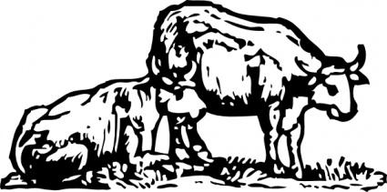 Animals Cartoon Farm Mammals Bull Lineart Horns Ox Oxen clip arts.