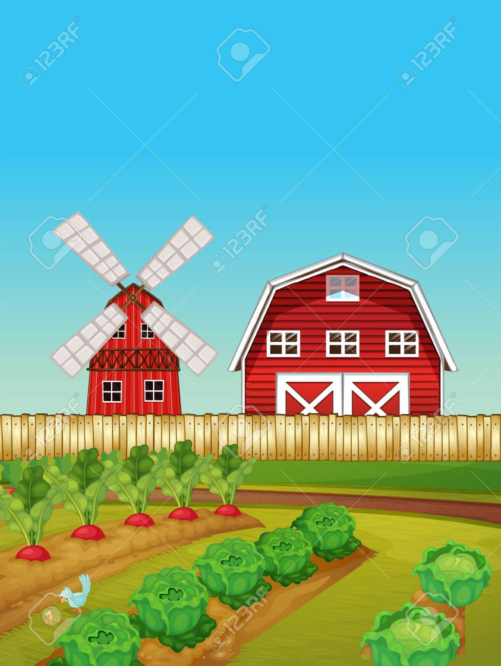 Farm scene with vegetable garden and barn illustration.