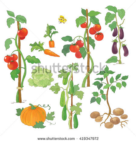 Plant Cartoon Stock Photos, Royalty.
