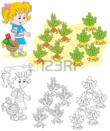 On A Farmer Kitchen Garden Images & Stock Pictures. Royalty Free.