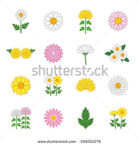 Chrysanthemums Fall Stock Photos, Royalty.