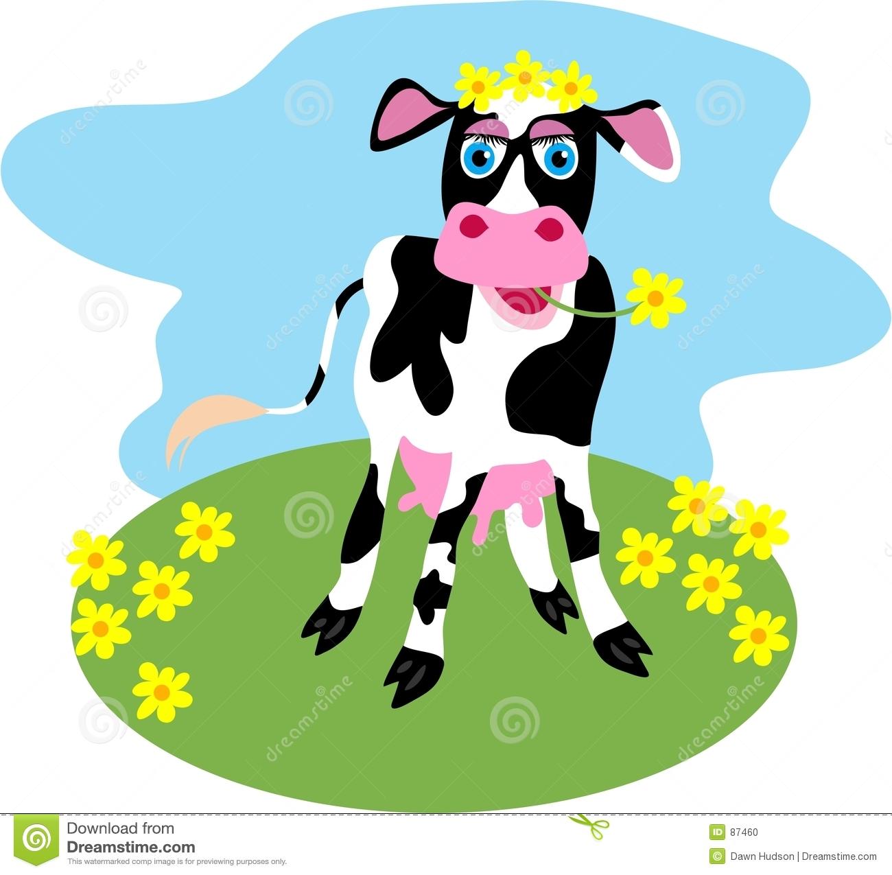Daisy Cow Stock Photo.