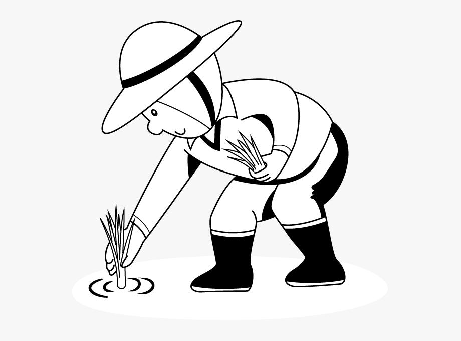 Farmers Clipart Rice Farmer.